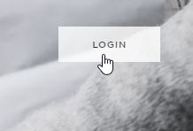 squarespace_login_button